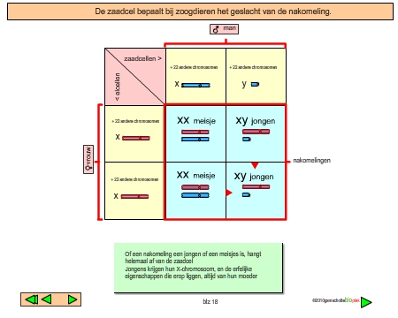 bioplek inhoudonderbouw